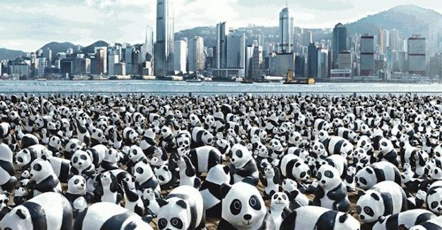 too many pandas